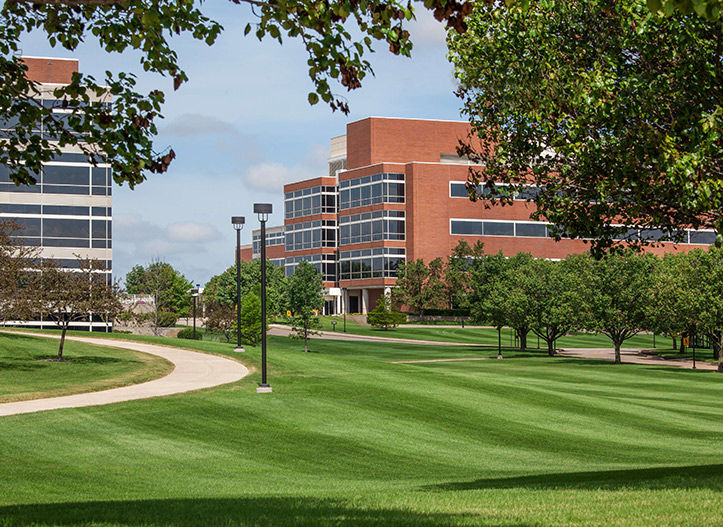business-campuses---iStock-512082011.jpg